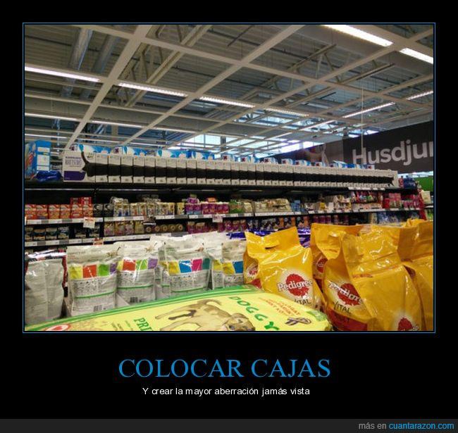 cajas,foto,gato,largo,longcat,supermercado