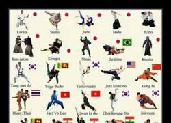 Enlace a ¿Cuál es tu arte marcial?