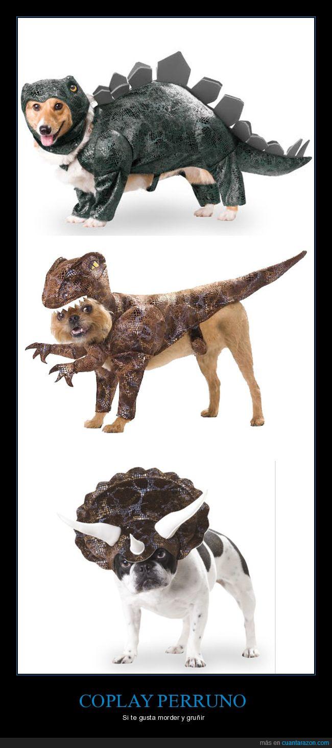 abuso animal,cosplay,dinosaurios,perros