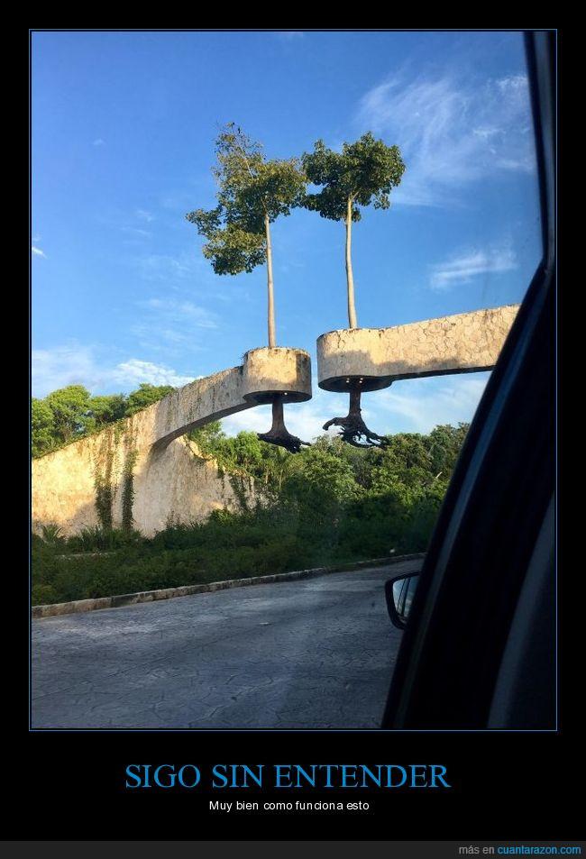 árboles,colgar,estructura,puente?