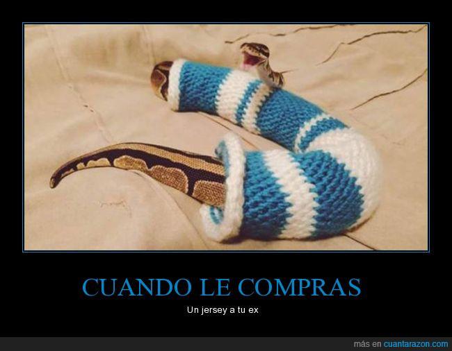 feliz,jersey,sangre fría,serpiente