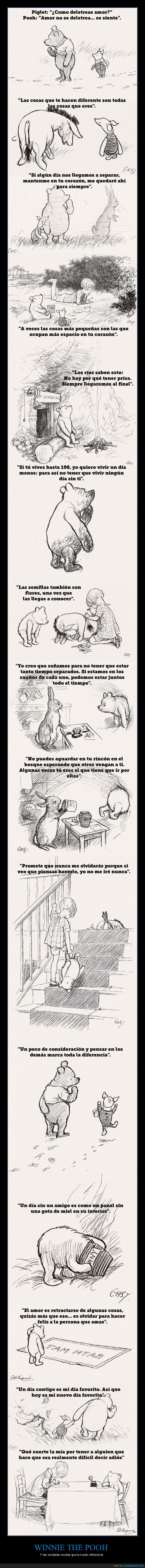dibujos,verdades,winnie the pooh