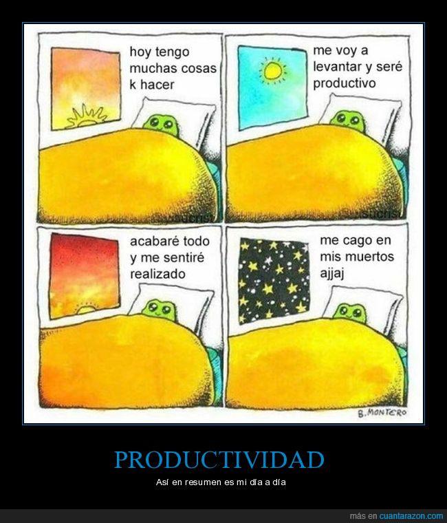 cama,cielo,estrellas,productividad,sol,ventana