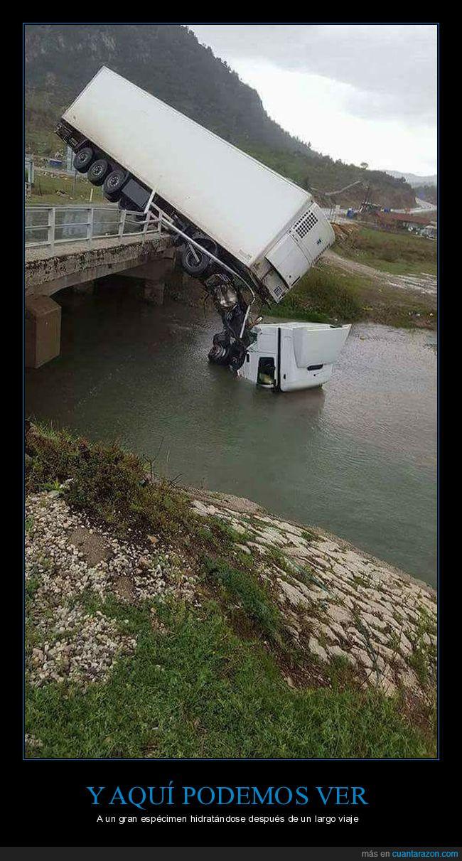 agua,caer,camión,puente