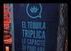 Enlace a La magia del tequila