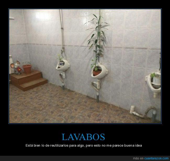 lavabo,plantas,reutilizar