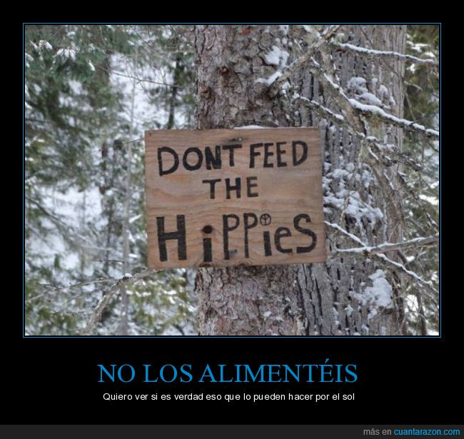 alimentar,árbol,bosque,cartel,hippies