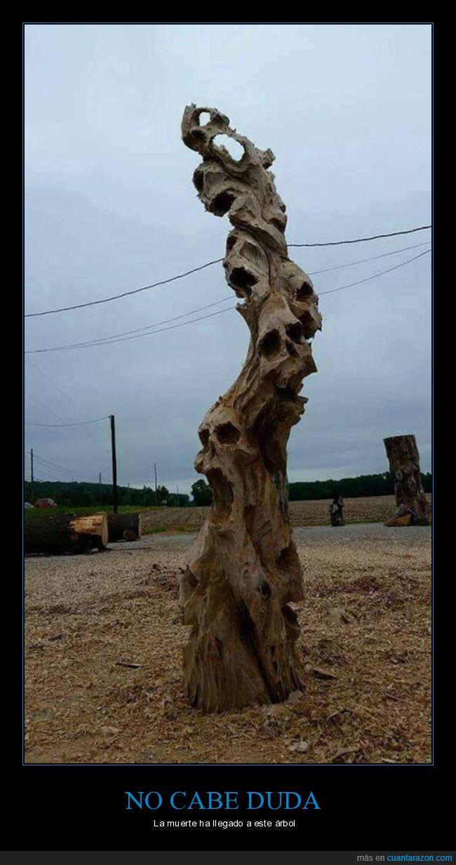 árbol,arena,seco,tronco