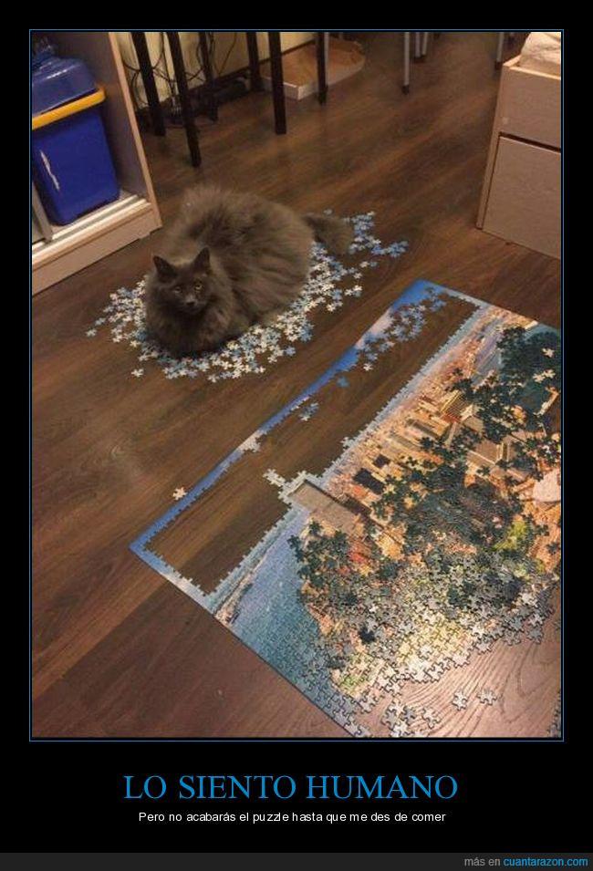 comer,comida,gato,piezas,puzzle
