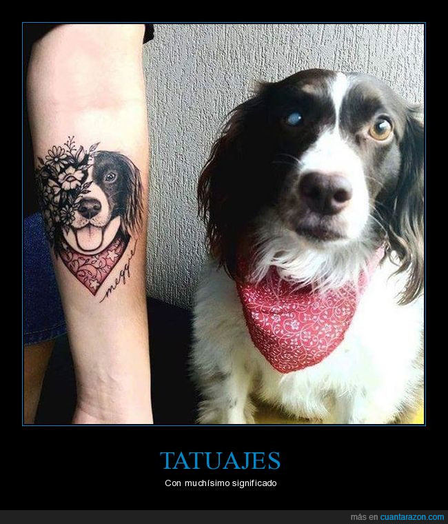 amor,bonita,cataratas,Hermoso,perra,tatuaje