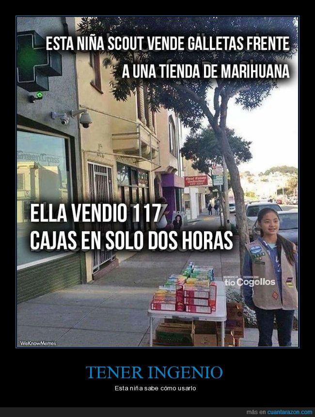 dinero,galletas,genia,ingenio,marihuana,vender