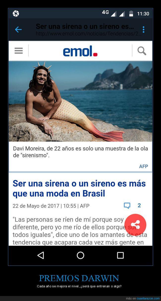 Brasil,darwin,moda,premios,sirena,sireno