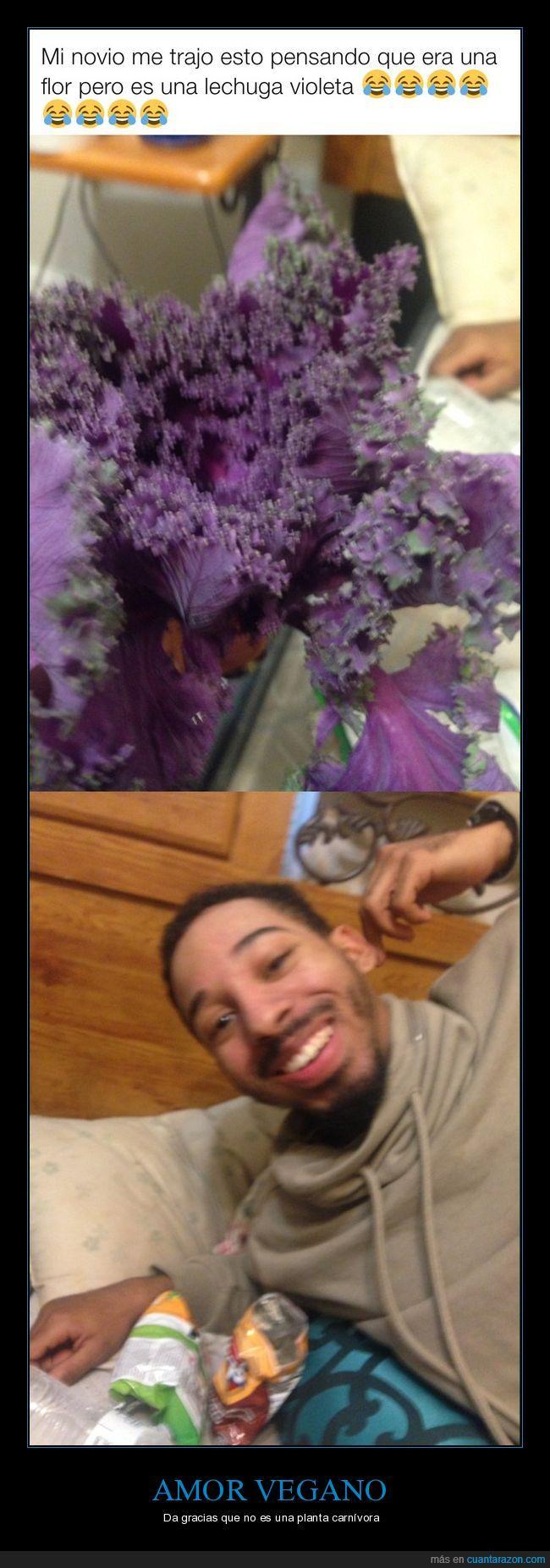 amor vegano,flores,lechuga,novio