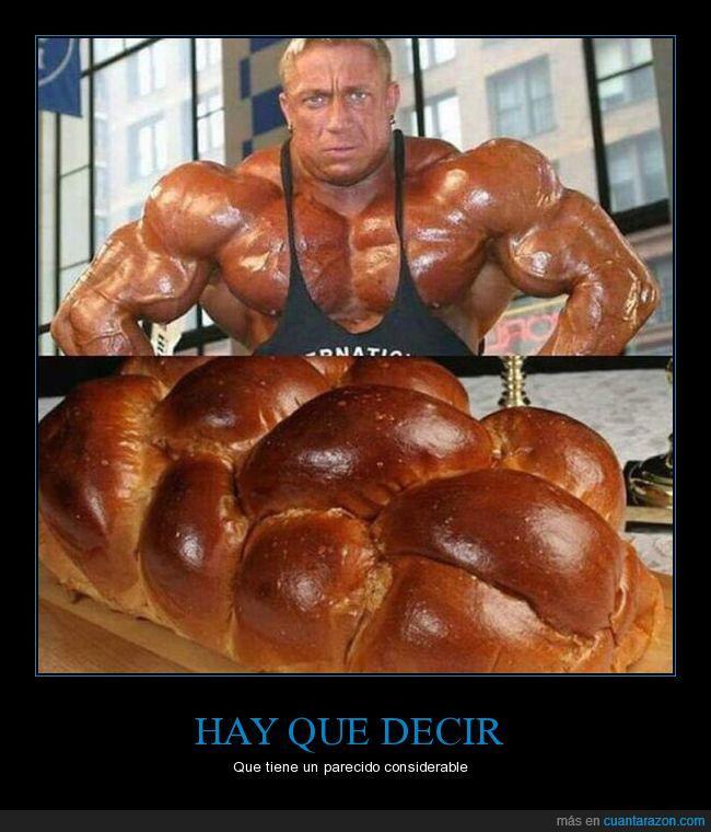 hombre,músculo,panecillo,semejanza