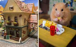 Enlace a Tardamos 1984 horas en crear esta ciudad en miniatura para hámsters