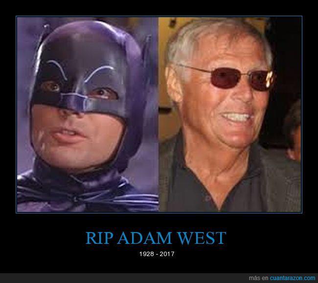 adam west,bati twist,batman,gatos