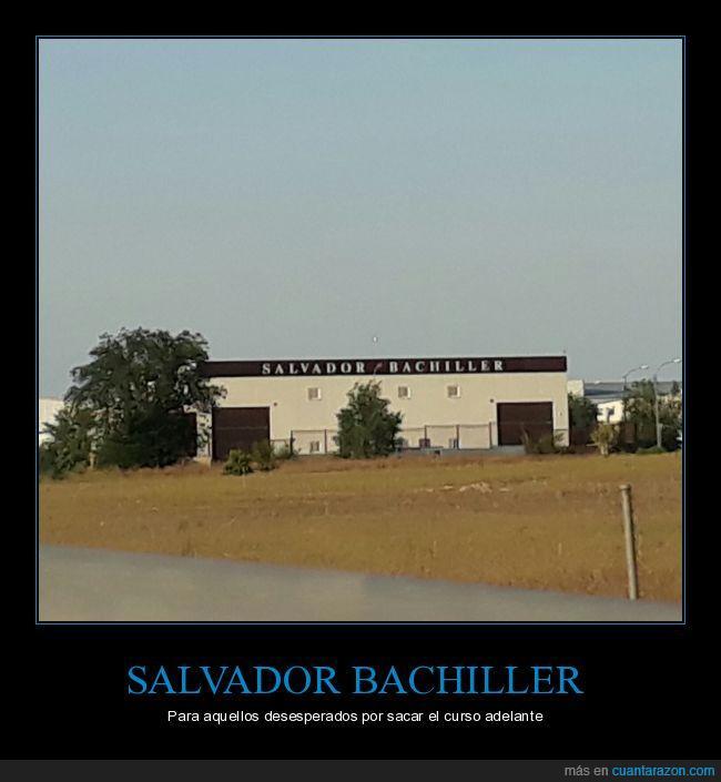 bachiller,colegio,estudios,instituto,selectividad