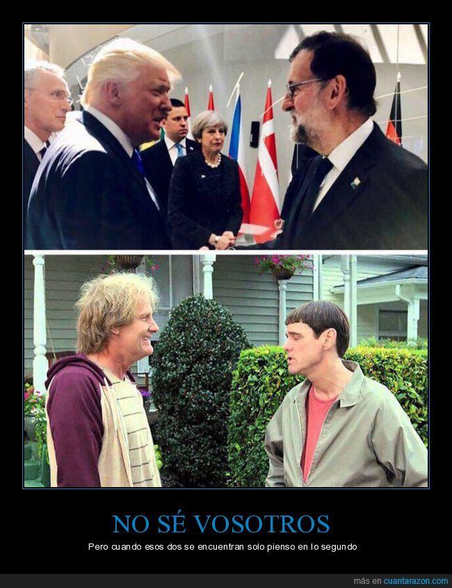 dos tontos muy tontos,Jim Carrey,Mariano Rajoy,película,política,presidentes,Trump