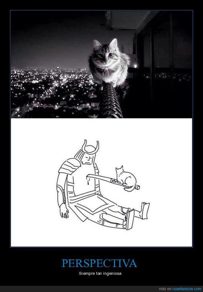 gato,matar,samurai,tierno
