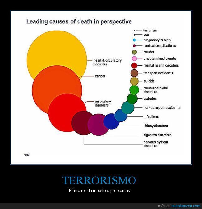 menor,problemas,terrorismo