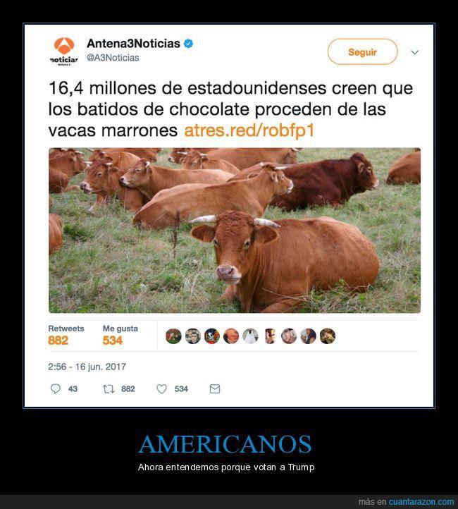 Cuando creías que los americanos no podrían ser más tontos van y piensan  esto de las vacas