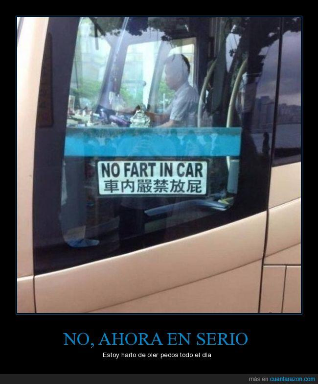 autobús,bus,norma,pedo,tirarse