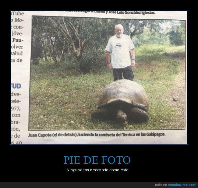 abuelo,aclaración,detrás,foto,galápago,tortuga