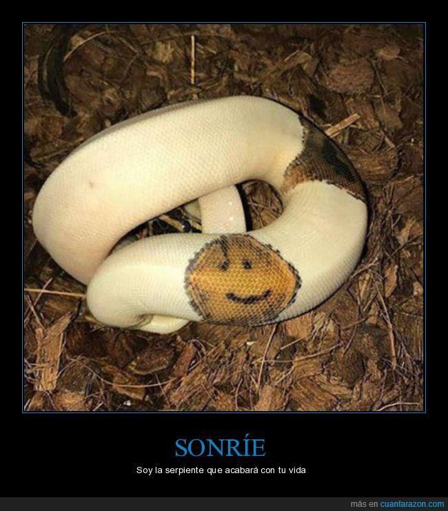 serpiente,smile,sonrisa