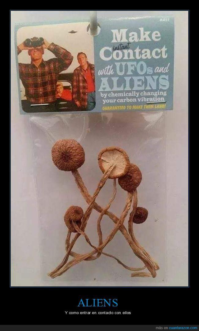 aliens,drogas,extraterrestres,setas
