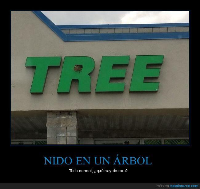 árbol,letrero,nido,tree