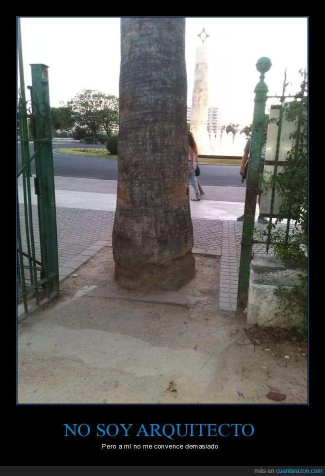 árbol,en medio,puerta,tronco