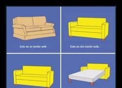Enlace a Explicar la bisexualidad con sofás