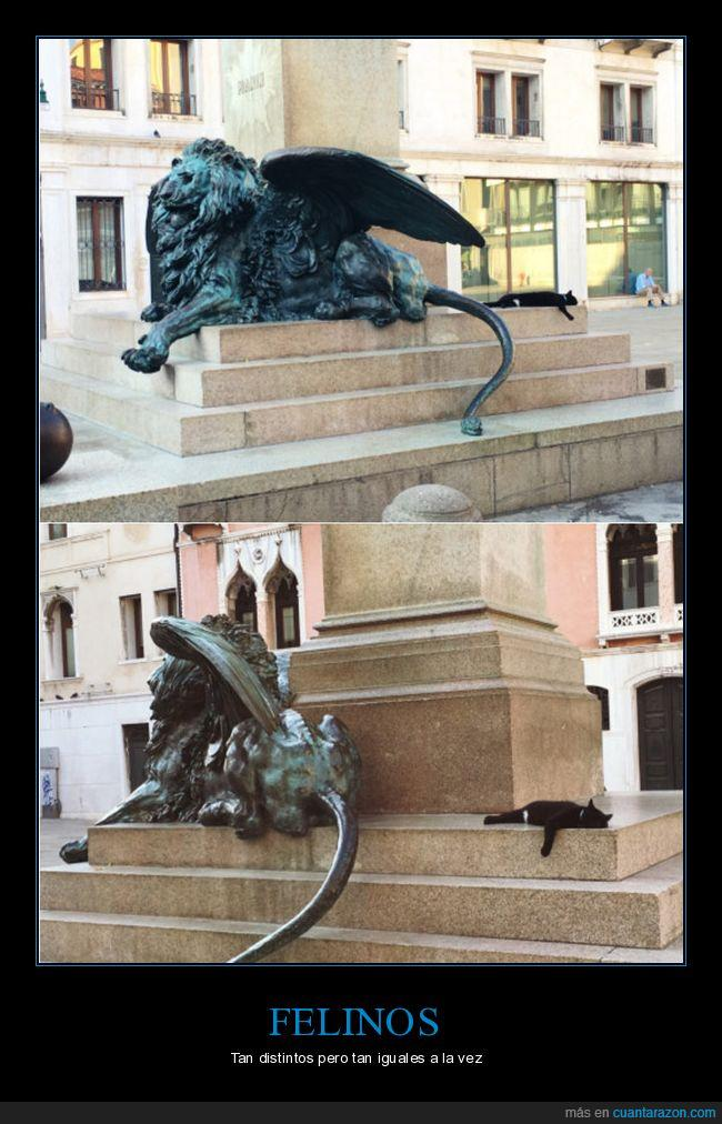 estatua,gato,león,misma pose