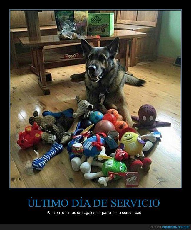 comunidad,perro policía,regalos