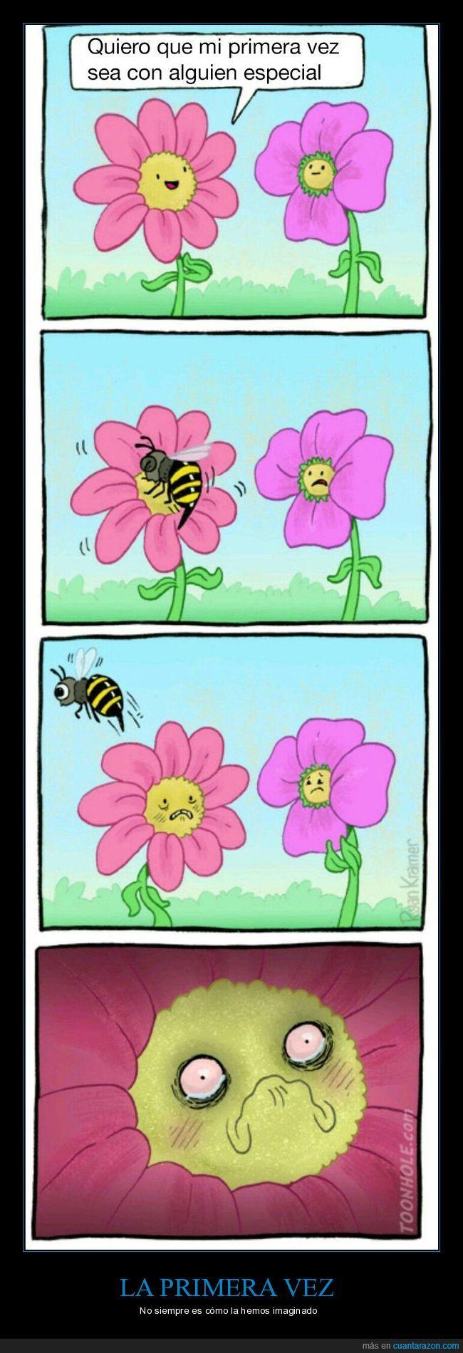 abeja,ay mi madre,flor,primera vez