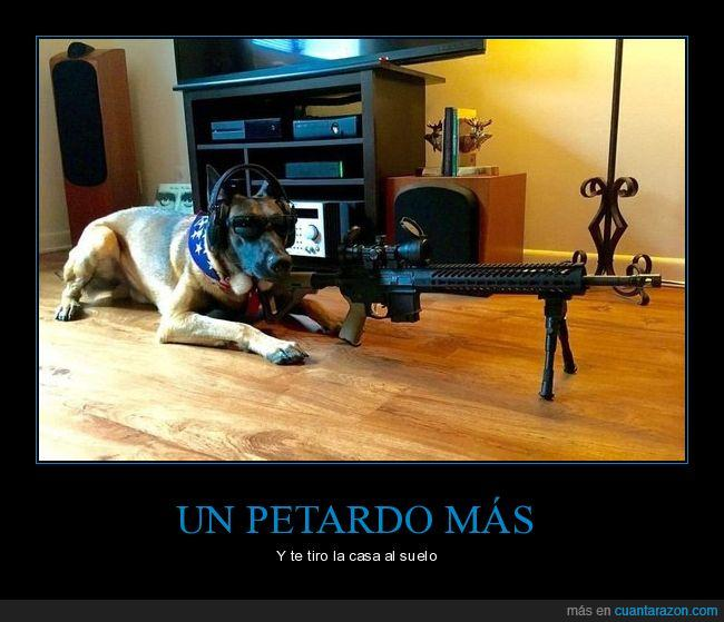 francotirador,perro,petardos
