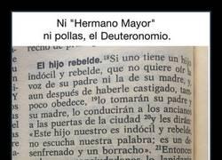 Enlace a TRATAR HIJOS REBELDES