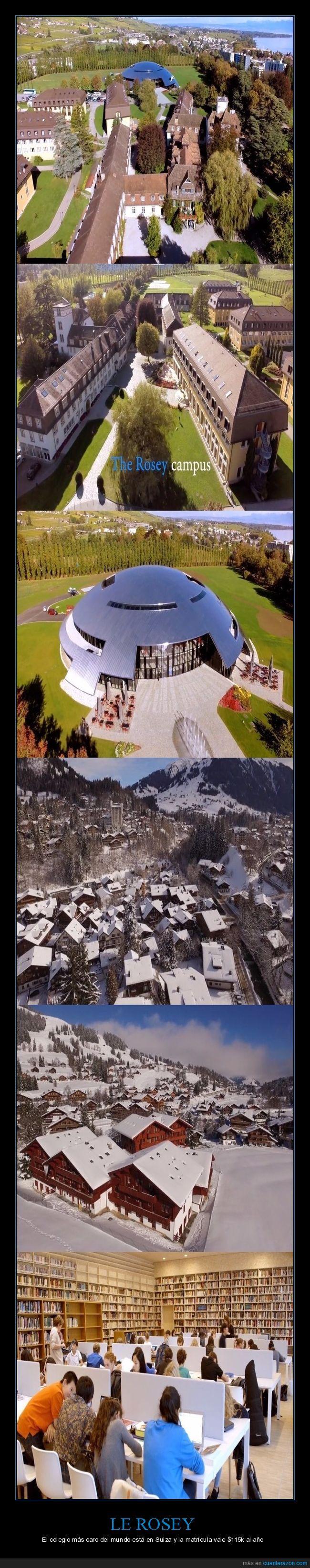 campus,le rosey,suiza,universidad