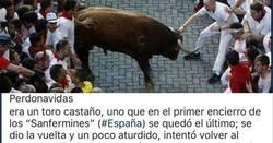 Enlace a La historia de este toro que tiene el corazón en un puño hasta a los más taurinos