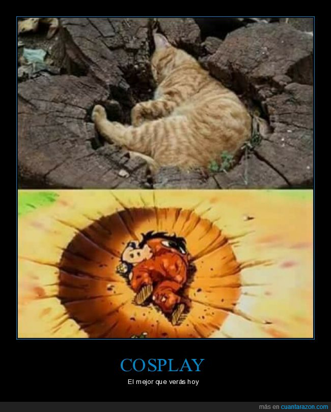 cosplay,dragon ball,gato,yamcha
