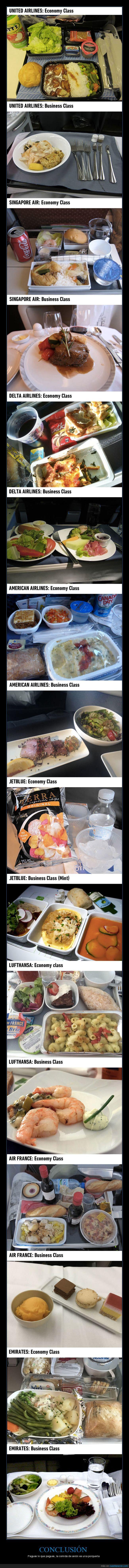avión,business,comida,economy,vuelos