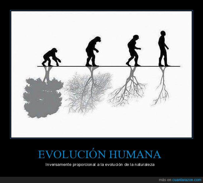 árboles,evolución,humanos,personas