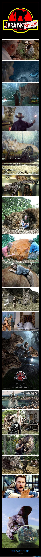 dinosaurios,gatos,jurasic park