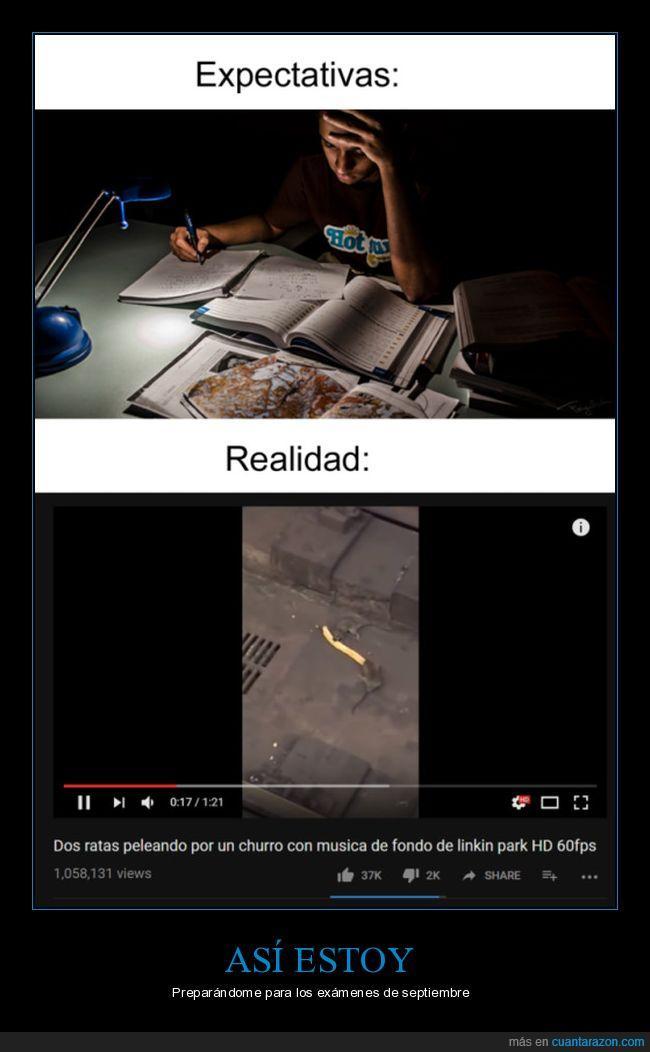 distracciones,estudiar,youtube