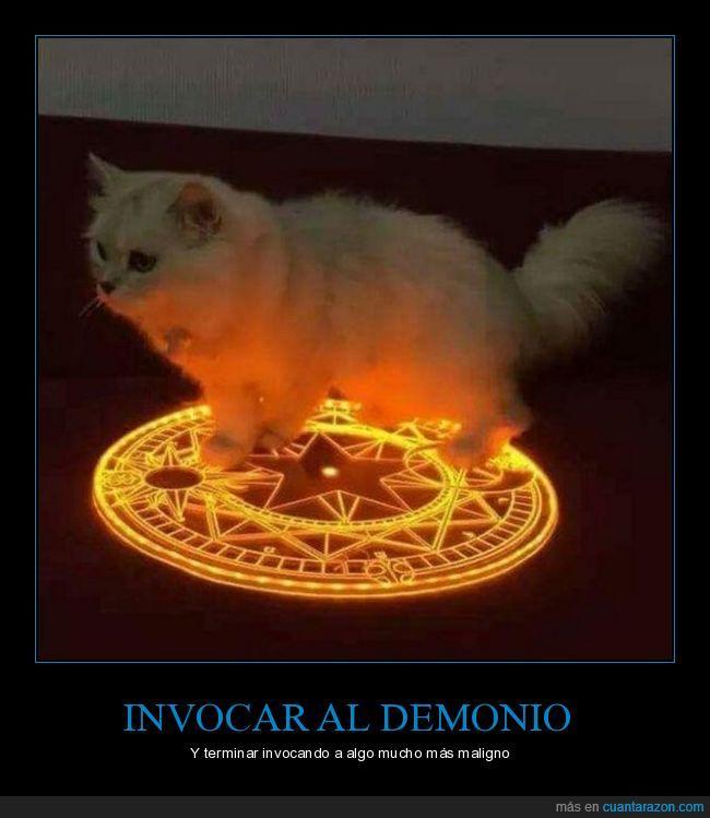 demonio,diablo,gato