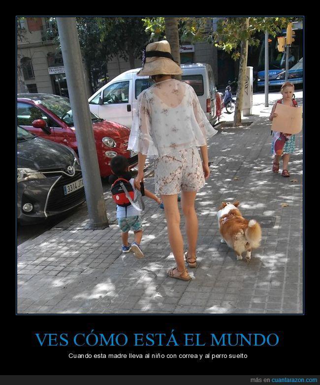 correa,niño,pasear,perro