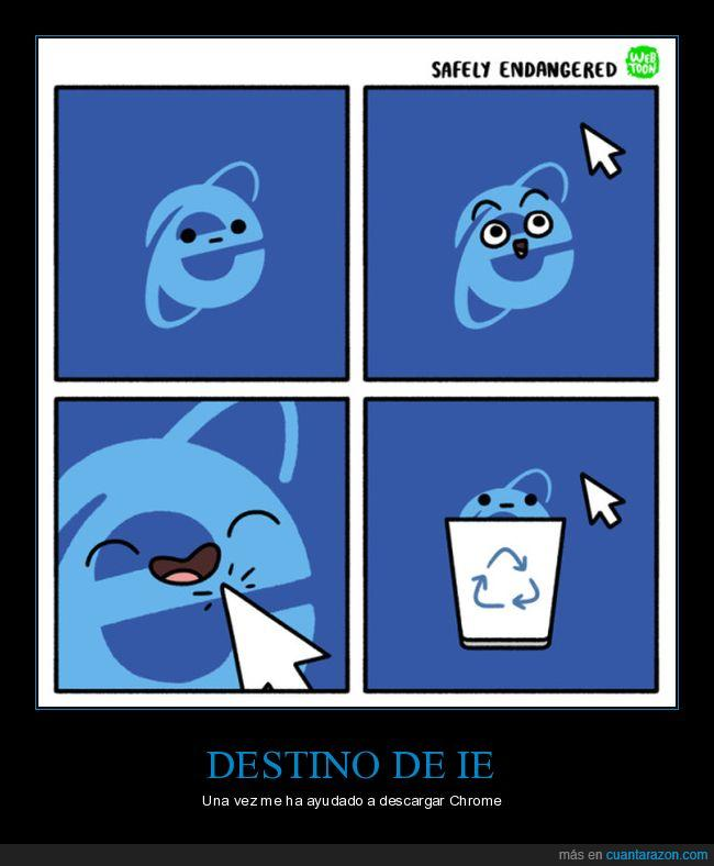 ie,internet explorer,papelera
