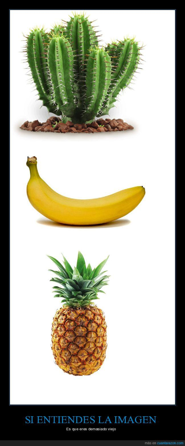cactus,infancia,piña,platano,viejo