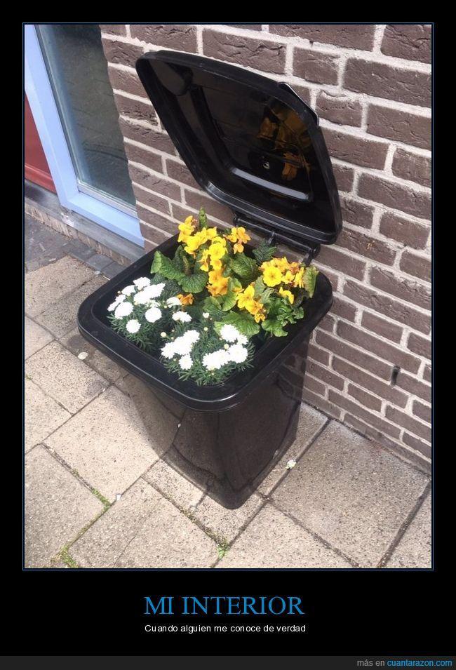 basura,flores