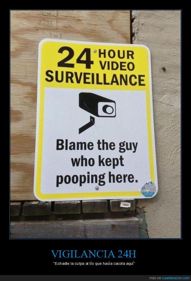 caca,cámara,poop,vigilancia